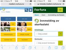Forsiden av medlem.nortura.no t.v., og innmeldingsbildet for storfe på Min side vist på smarttelefon.