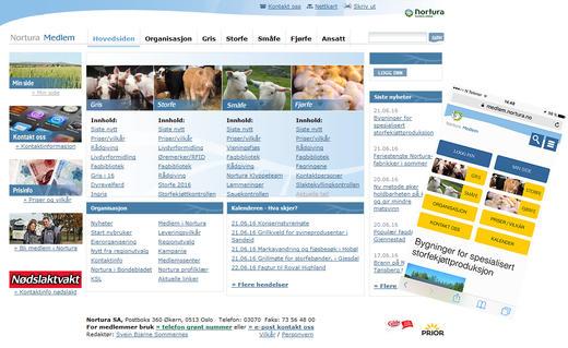 Bildevisning av nettsiden på web og mobil