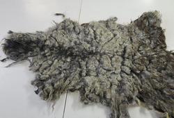 Returskinn som har kome inn til garving og har for dårleg kvalitet.
