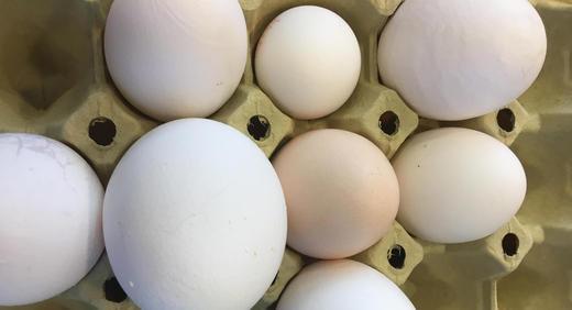 Egg er biologisk materiale, med naturlig variasjon i form og størrelse.