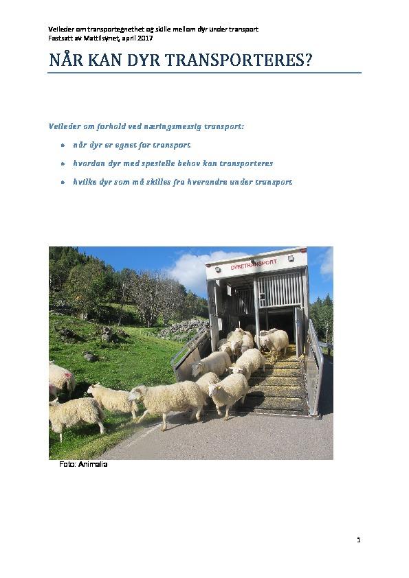 Veileder om transportegnethet og skille mellom dyr under transport