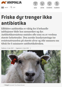 Artikkel på animalia.no