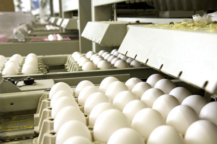 Eggpakking