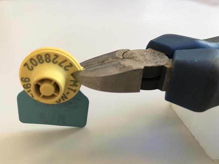 Bilde RFID-destruksjon