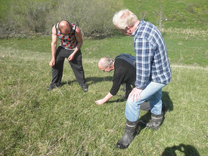 Rune, Yngve Rekdal og Erling Skurdal studerer beiteplantene i beitet