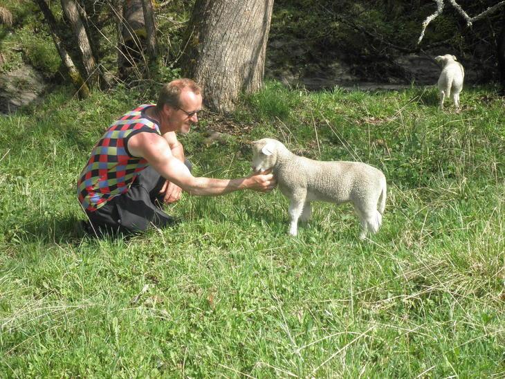 Rune Sandklev og eit av lamma som har fått litt ekstra stell i vår. Riktig gode vener ser det ut til.