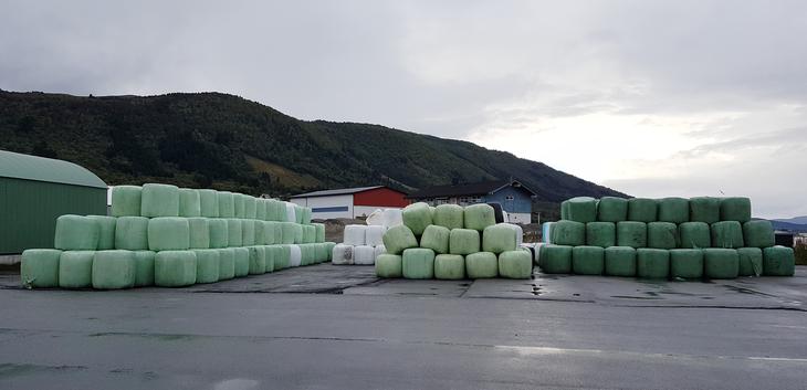 Islandsfôr fra FK/Tine/Nortura