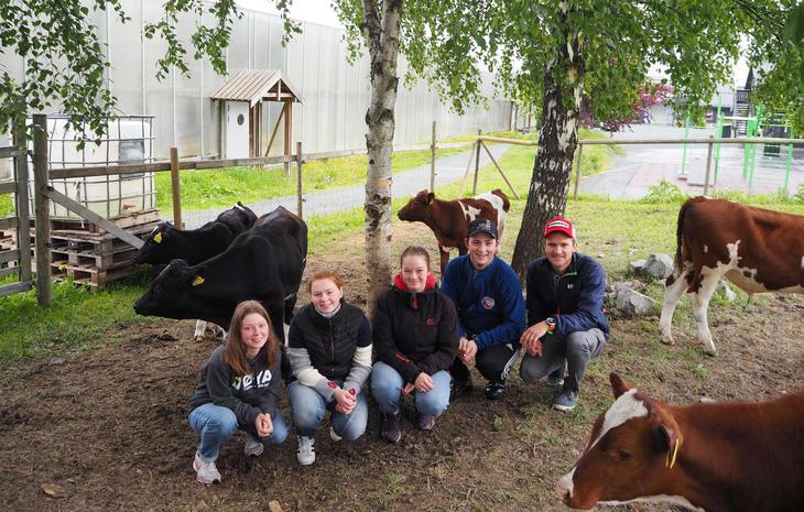 Årets vinnere på Husdyrtreff Storfe melkeproduksjon fra venstre,Elin Sæther Brevik, Ane Sofie Dolmseth, Ellinor Gunnes og Birger Gikling Ingeborgvik.