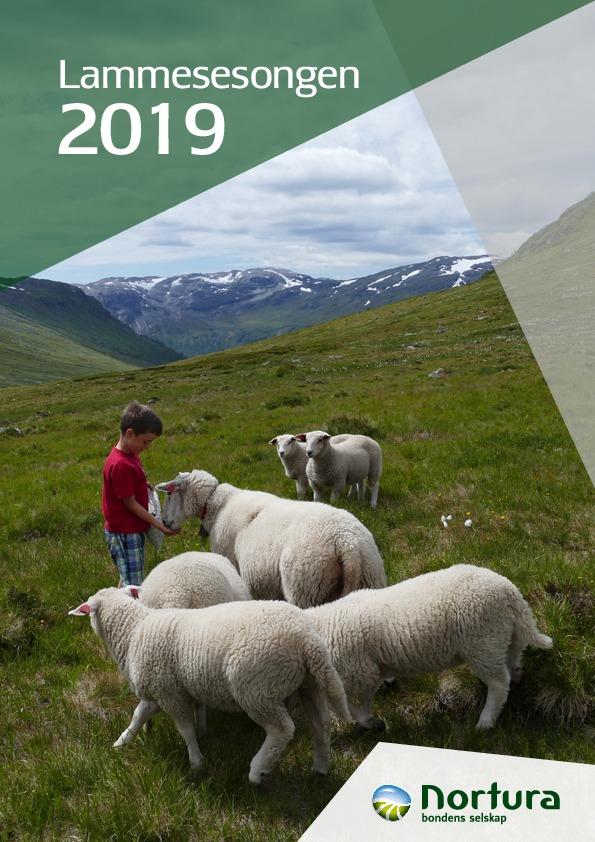 Lammesesongen 2019
