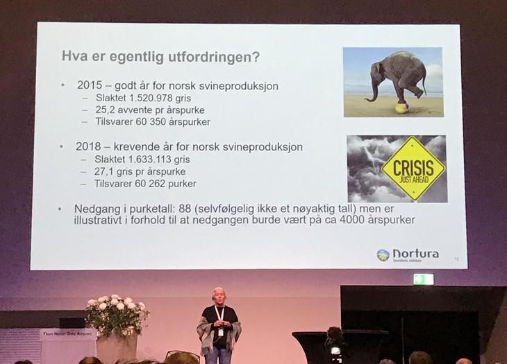 Utfordringer med for mye smågris, Karin Røhne